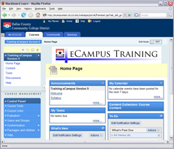 eConnect is a web interface that provides a variety of online services to DCCCD students, faculty, and staff.
